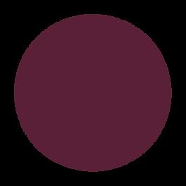 PURPLE CIRCLE.png