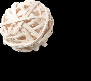 Bola de madeira 2.png