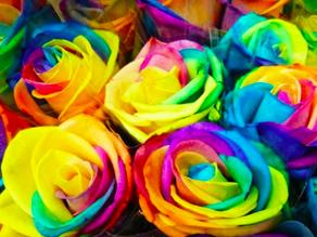 Casamento gay e o silêncio dos irrelevantes