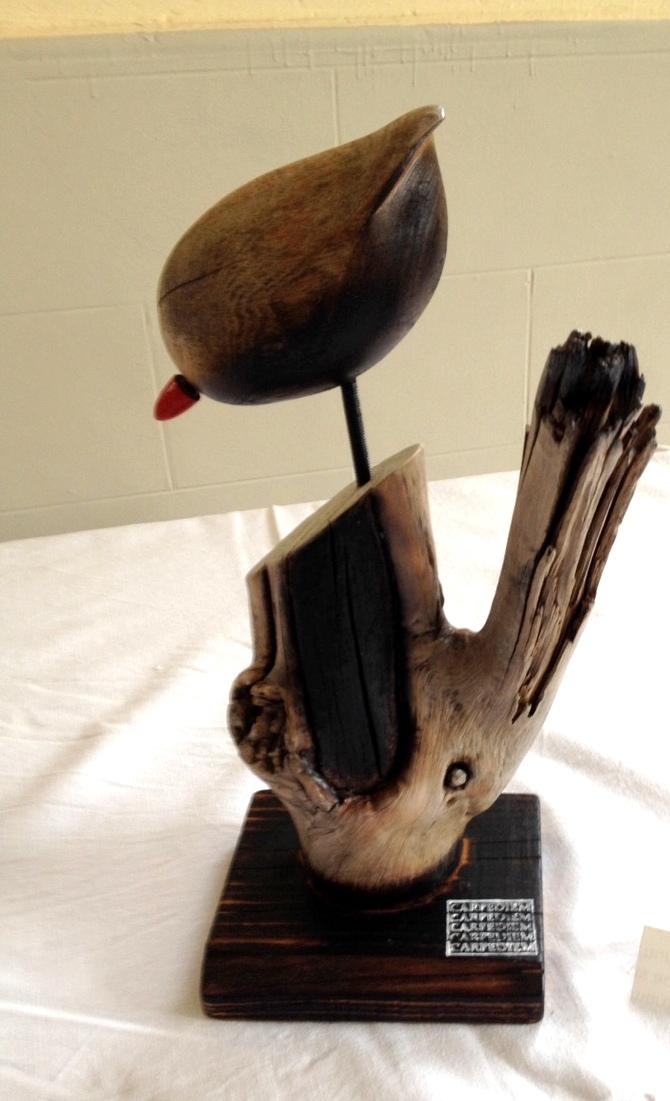 Pti Toizo (acacia)