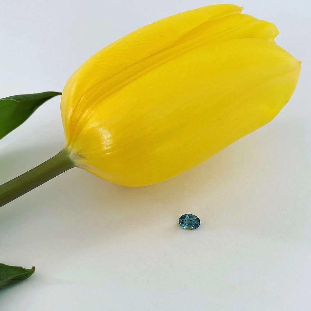 loose oval blue green teal sapphire next to a yellow tulip, on a white background