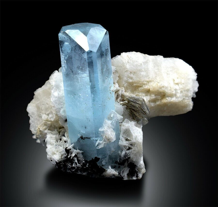 long aquamarine rough crystal on a white host rock on a black background