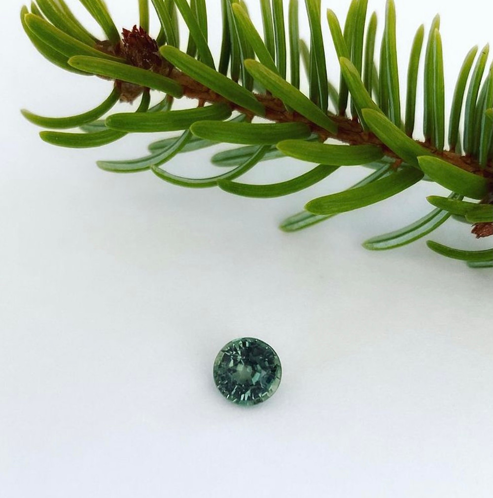 loose round blue green sapphire on white background next to fur tree branch