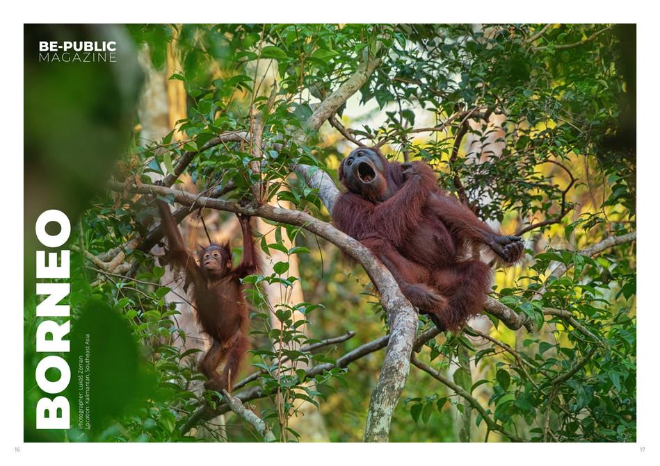 Borneo_photography