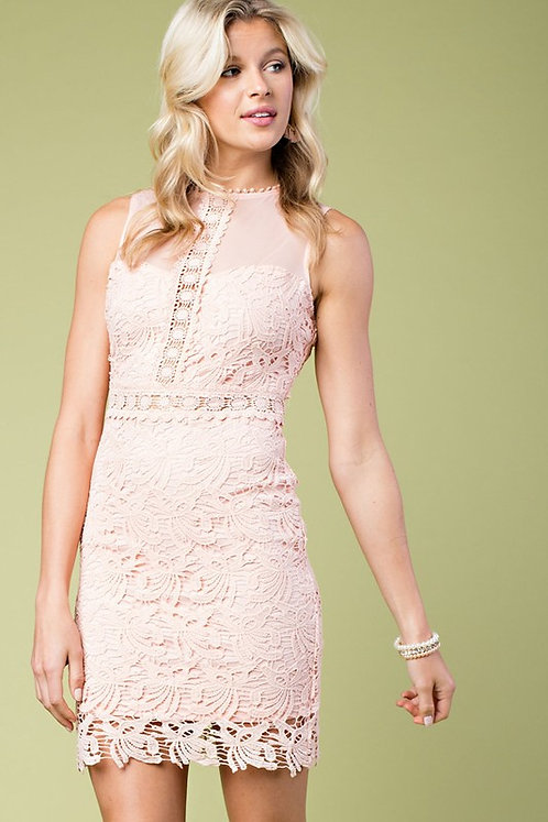 Peach Lace Fitted Dress