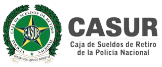 casur_edited.png