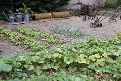 DSC_3863 Au 124, Dans le jardin, potager