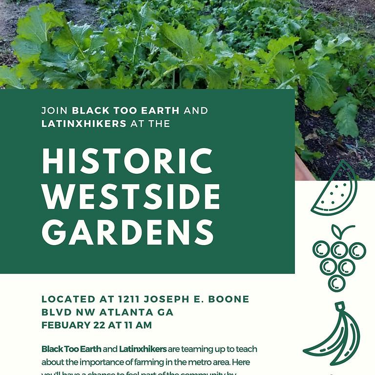 Historic Westside Gardens Volunteer Day