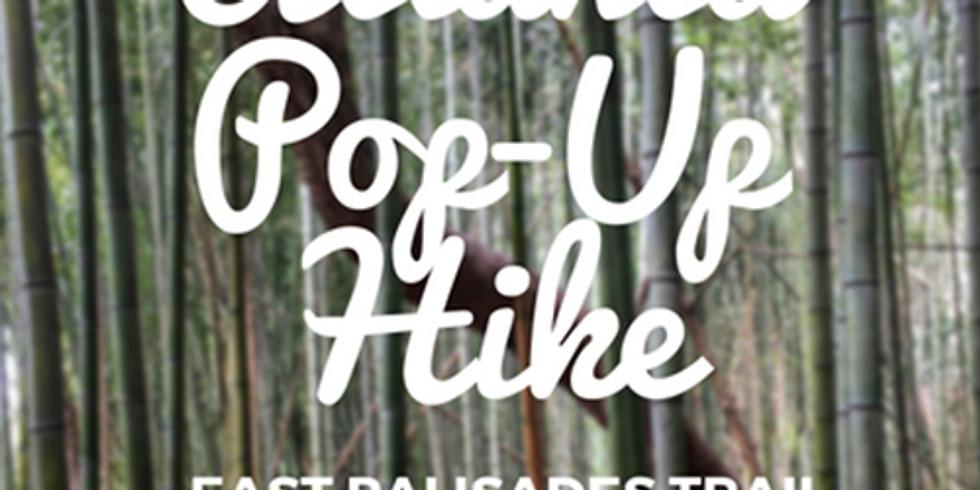 Atlanta Pop-up Hike (1)