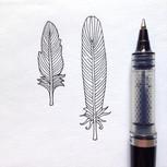 Illustration a l'encre de Chine / motif plumes