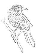 """Création du logo et de la charte graphique pour """"Ania Axenova – Paris"""" / bird"""
