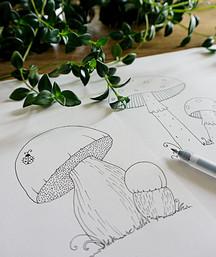 Illustration a l'encre de Chine – champignons