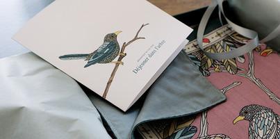"""Design du logo, de la charte graphique et du packaging pour """"Ania Axenova – Paris"""" / Packaging"""