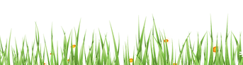easter-grass2-01.png