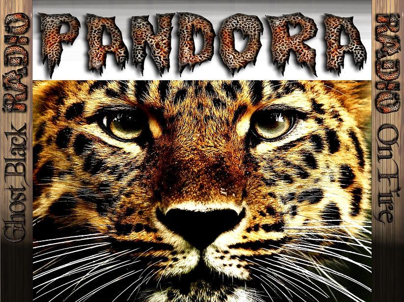 PANDORA RADIO BANNER LION 3 2400by1800.j