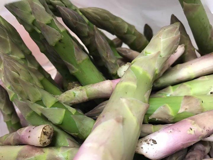 米澤 良太、米澤一民さんの作っているアスパラ_今、出て来たばかりのような物_最高に美味しいです。_この地域の美味しいものって_やっぱり野菜だと感じています。_近くで栽培しているイ