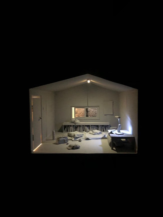 임리하-박주영b, <드림하우스>, 설치, 45×45×45cm, 2020.jpg