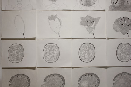 김머쉬룸, <XX속으로>, 셀 애니메이션, 2분 43초, 작화지에 펜, 2019 / <Behinds>, 셀 애니메이션, 45초, 작화지에 펜, 2020