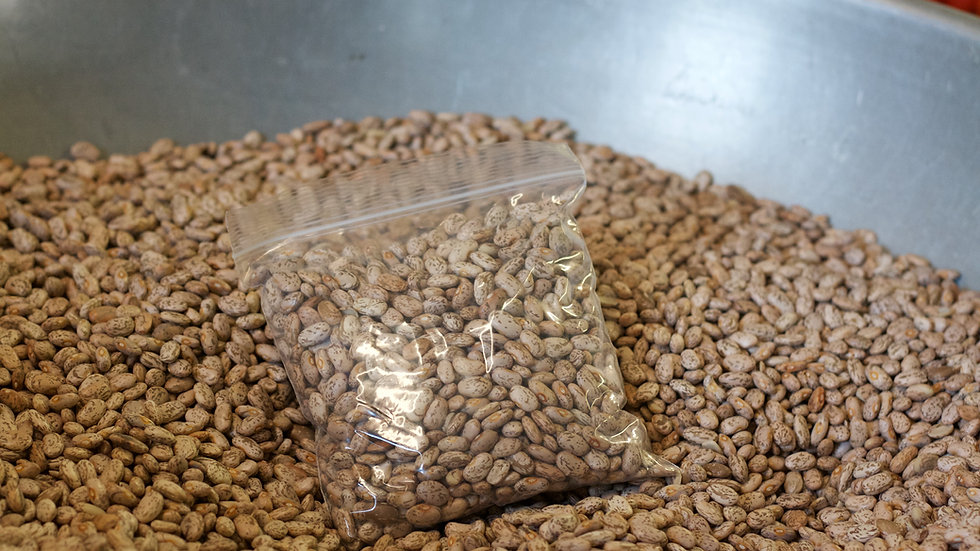 Pinto Beans [3pts]