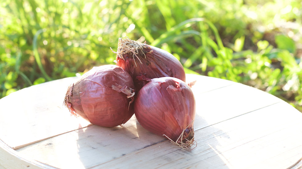 Red Onions [3pts]