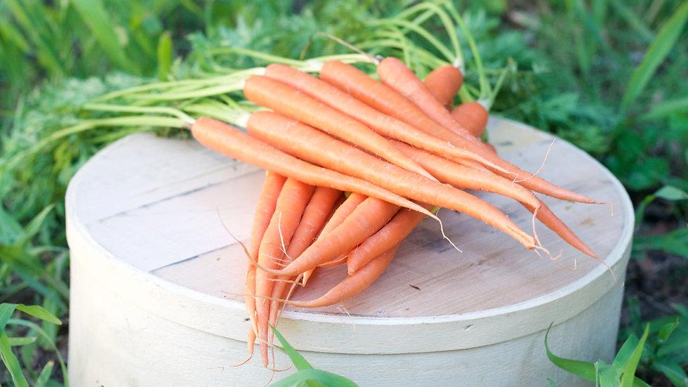 Carrots [3pts]