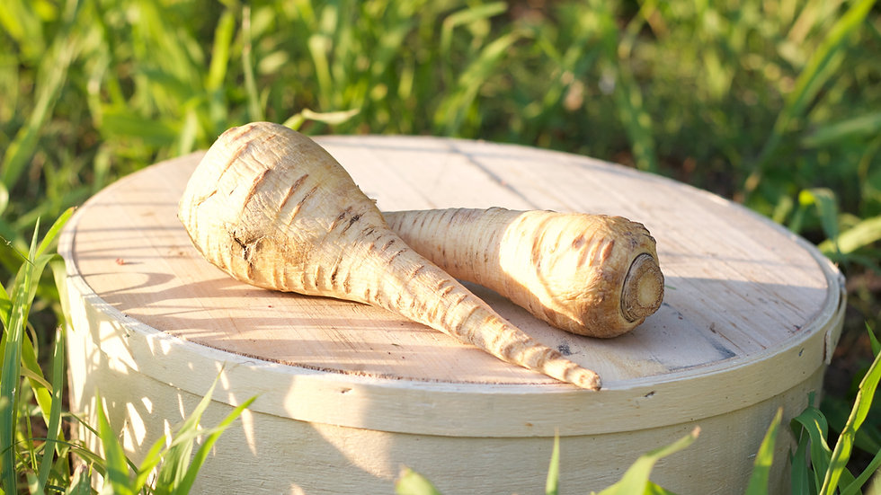 Parsnips [2pts]