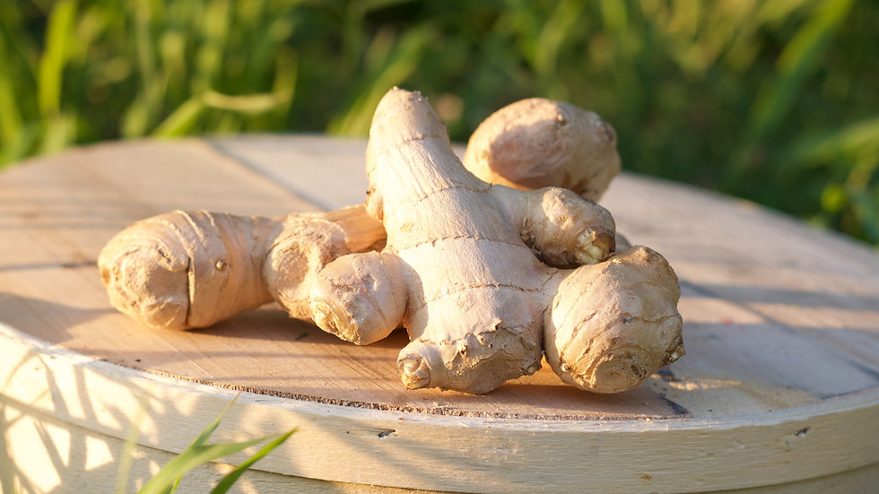 Ginger [4 pts]