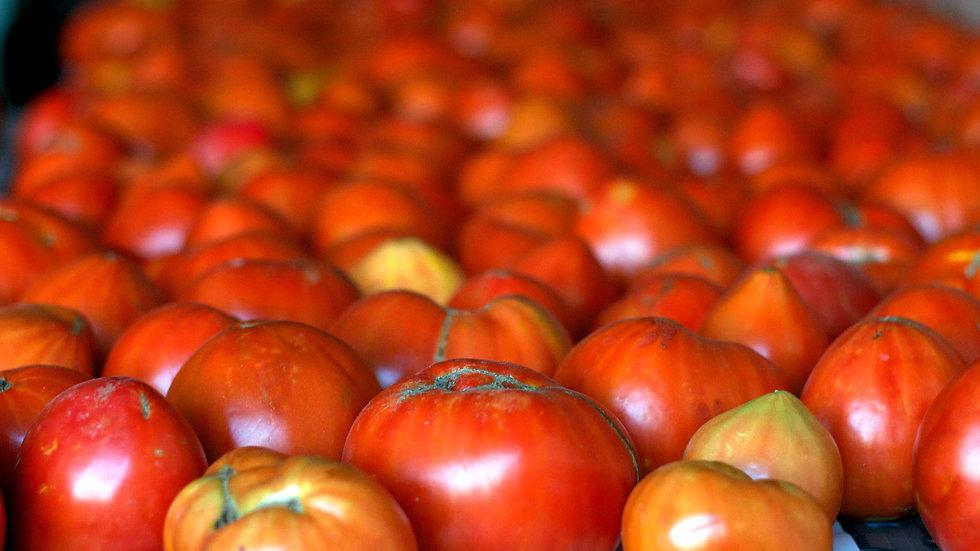 Heirloom Tomatoes [2pts]
