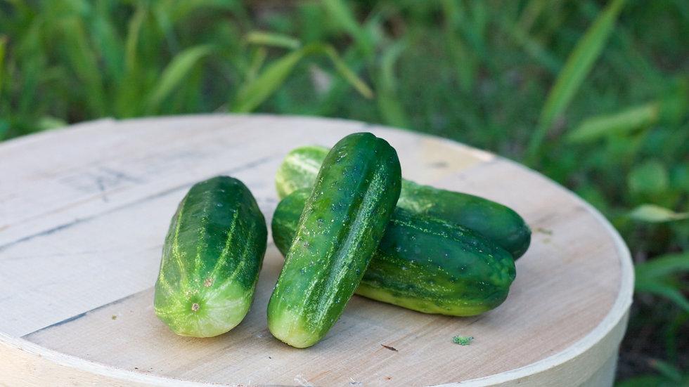 Cucumbers [2pts]