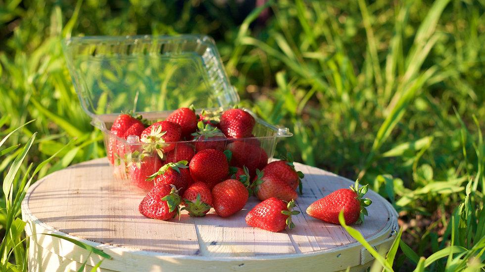 Strawberries [4points)