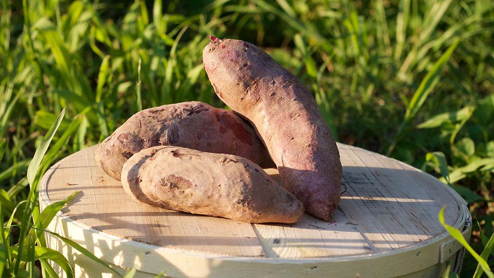Purple Sweet Potatoes [3pts