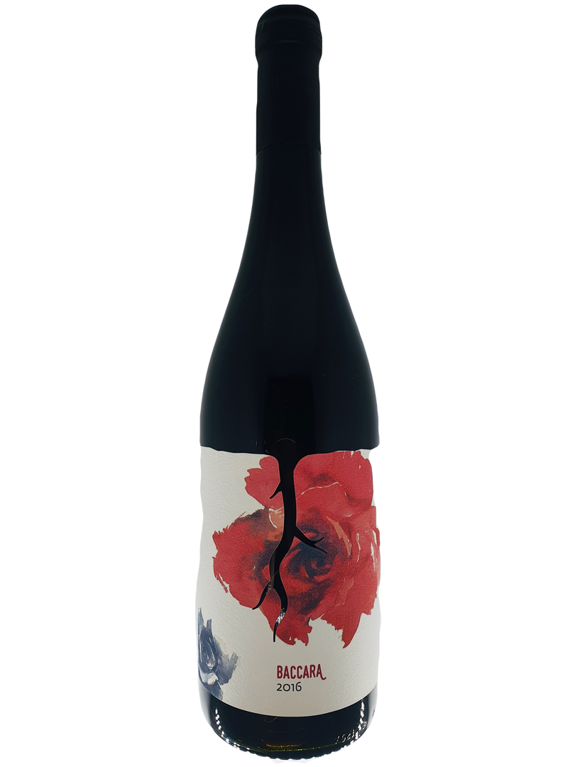 Vino Magula Baccara 2016