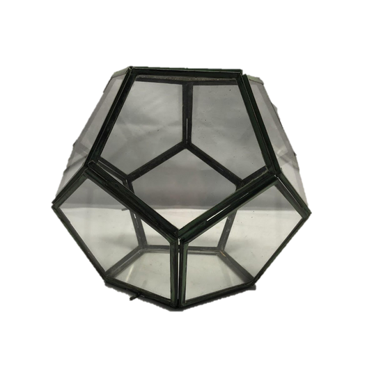 Geometric Terrarium wtih Metal Framing Throughout