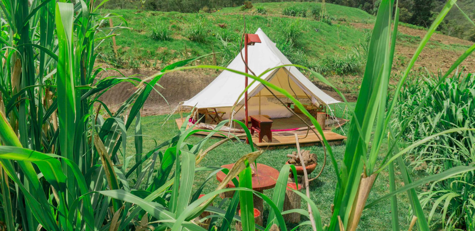 Cedron Glamping Tent Finca Corazon.jpg