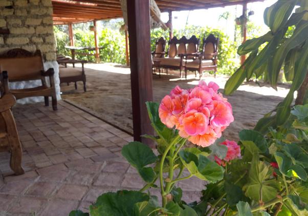 Flor Recepción
