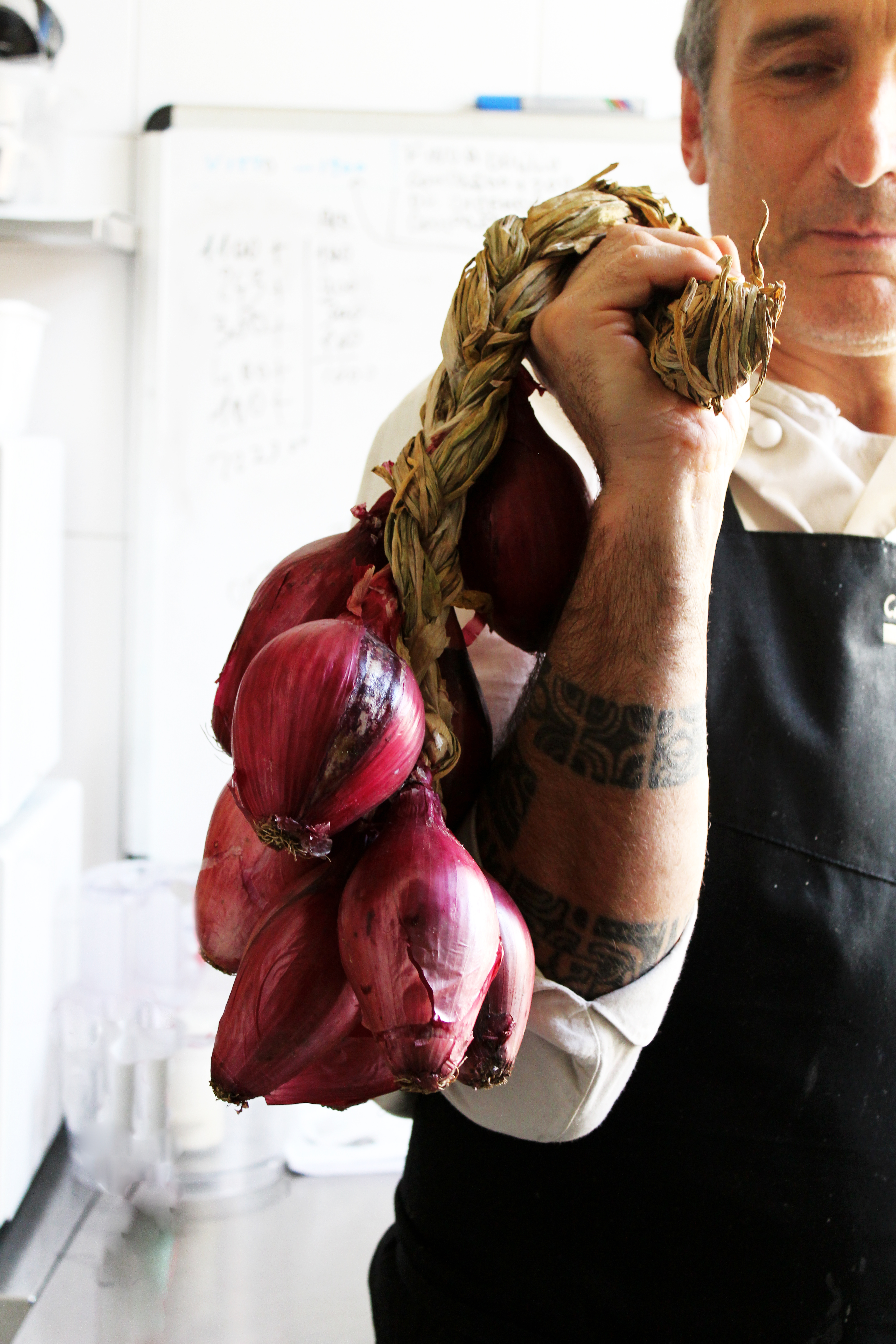cucina cipolle verticale