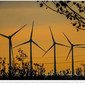 Provincie Zuid-Holland: Windmolens verder weg van woonkernen (AD)
