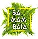 samambaia, música brasileira, festa