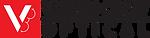 vision crew logo.png