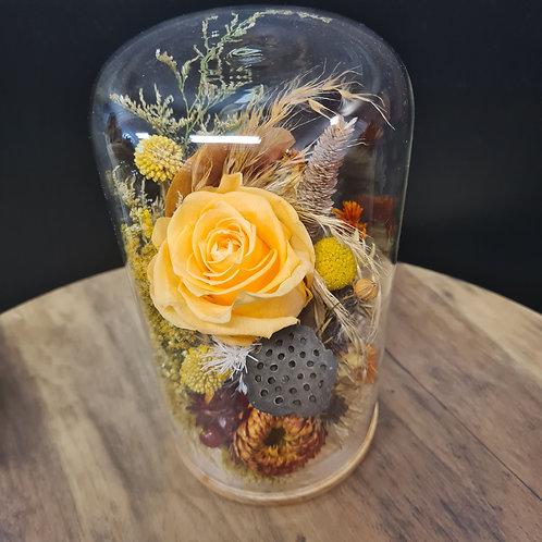 Honey Dew Glass Dome