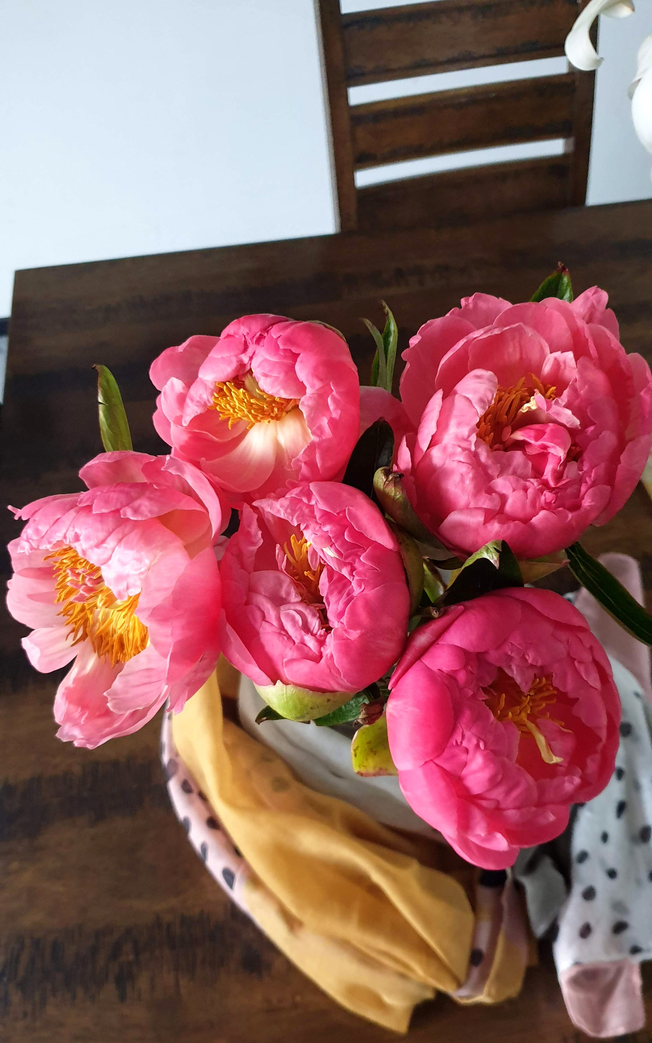 Coral Peonies Posybloom Boutique