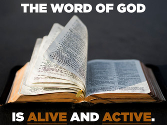 NEWSLETTER INSERT - ON THE WORD OF GOD IN OUR LIVES