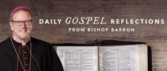 RECEIVE REFLECTIONS BY BISHOP ROBERT BARRON ON THE MASS READINGS EVERY DAY VIA EMAIL