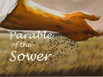 HOMILY FOR FIFTEENTH SUNDAY OF ORDINARY TIME (A)