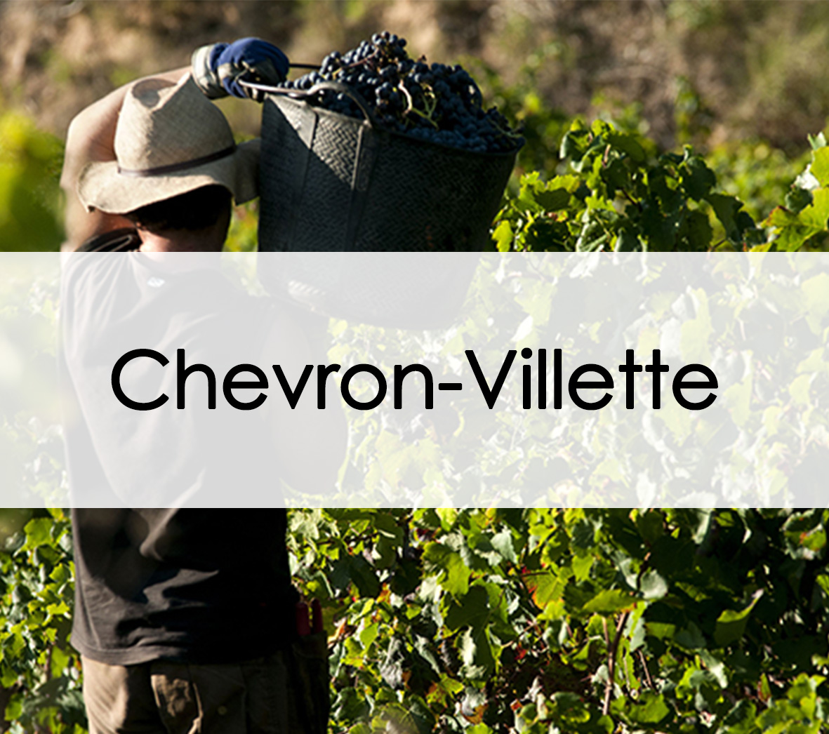 chateau chevron villette