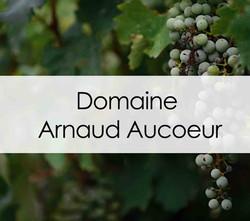 Domaine Arnaud Aucoeur