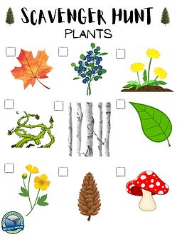 SCAVENGER HUNT - PLANTS-1.png