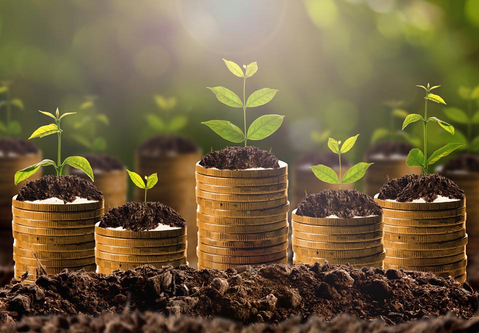 Se créer un revenu complémentaire