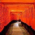 Cheap return flights from Europe to South Korea or Japan     mercytrip.com