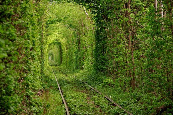 Tunnel of Love, Ukraine   mercytrip